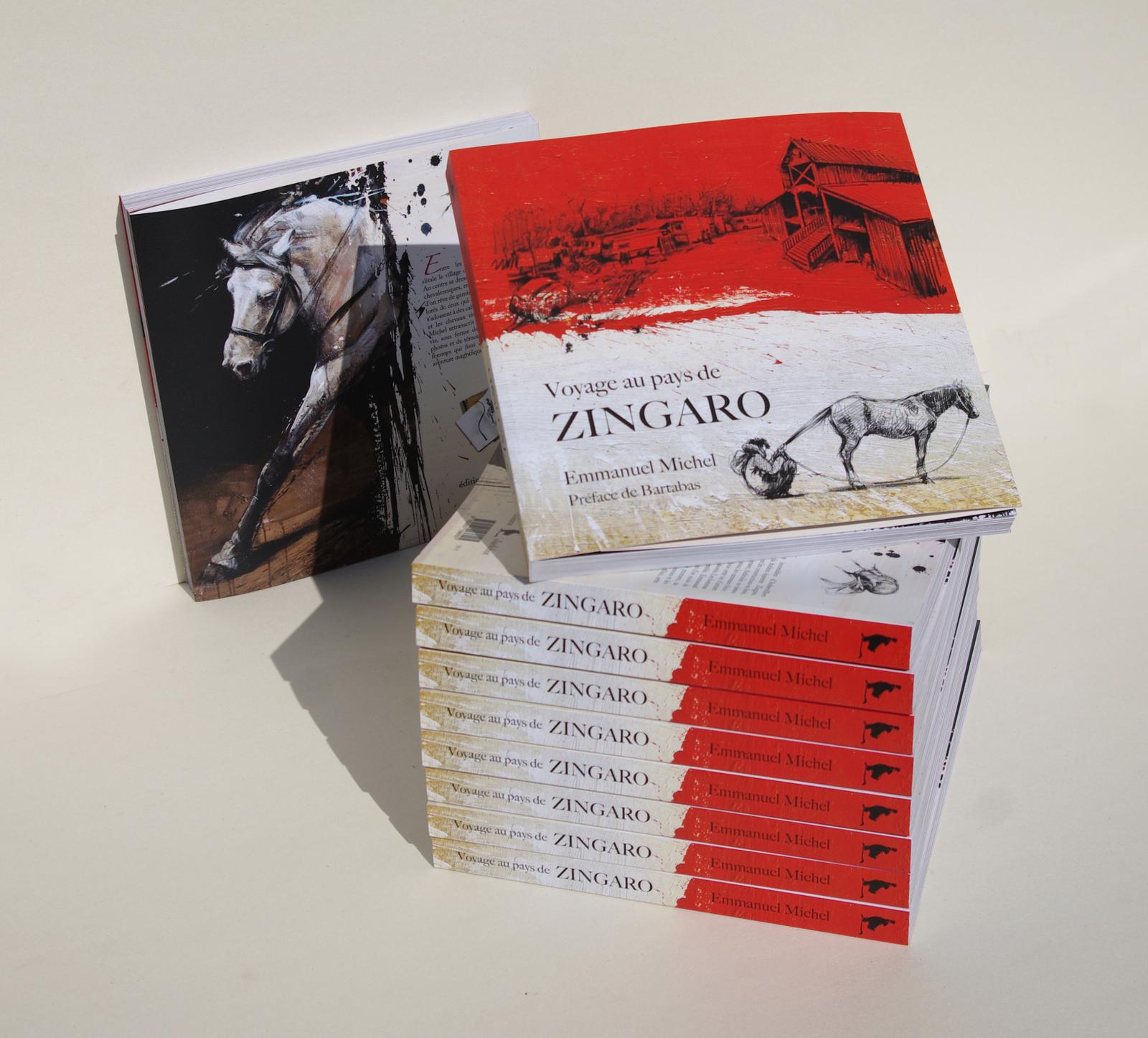 """Exhibition """"Voyage au pays de Zingaro"""""""