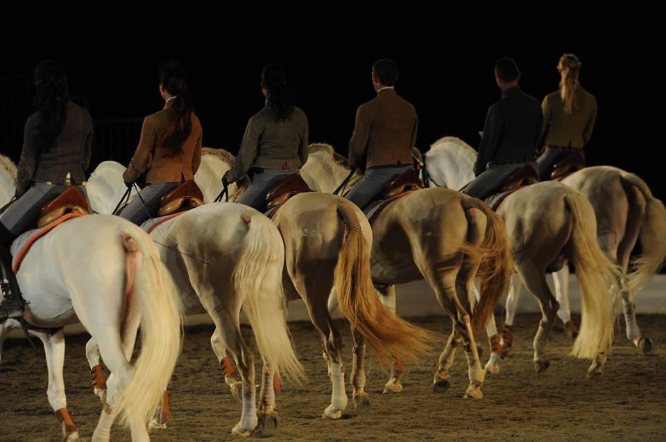 The Equestrian Academy in Al Aïn
