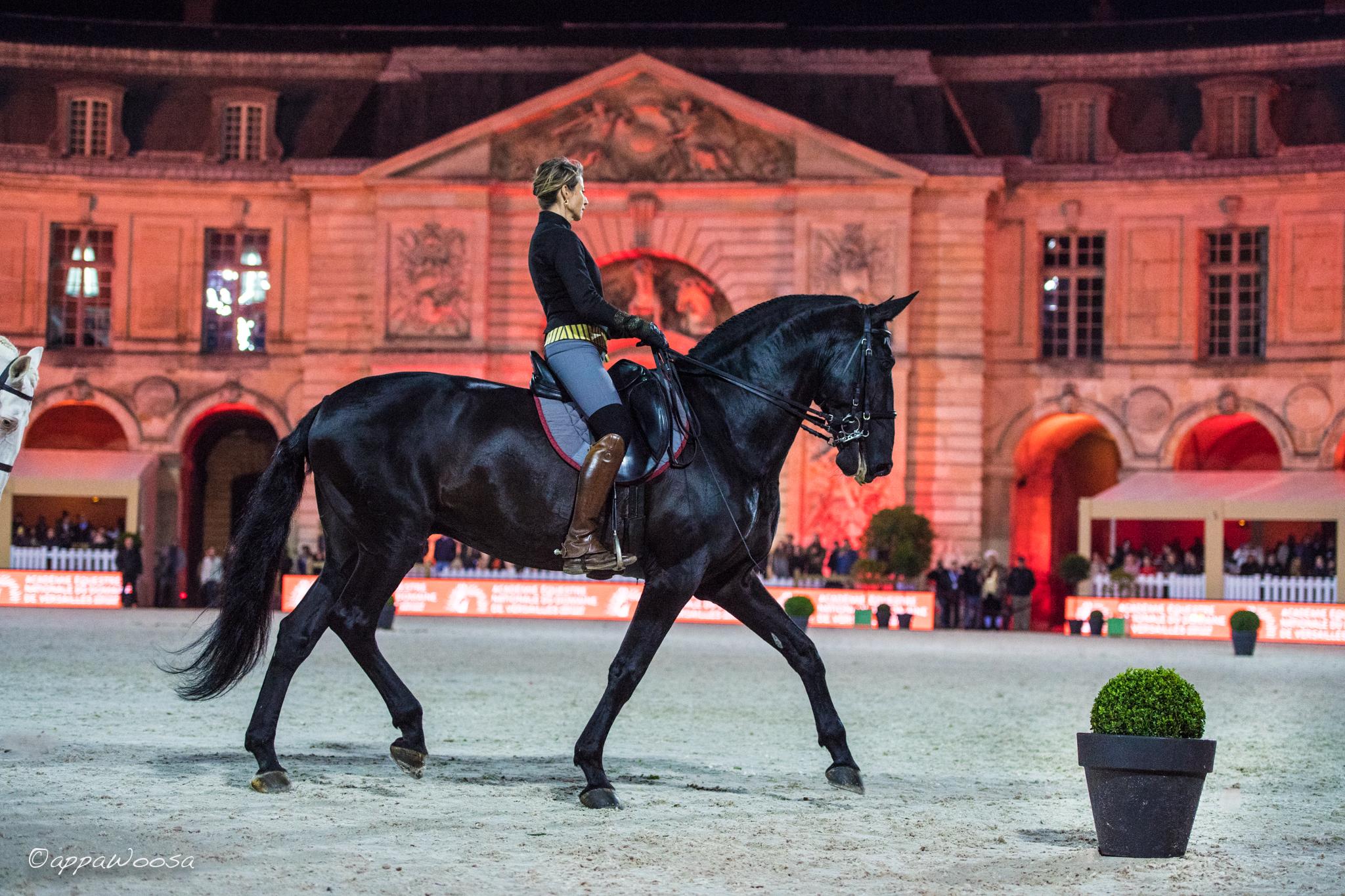 Retour en images sur le Jumping de Château du Versailles